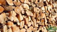 Інформація про місця відпуску та ціни на дрова паливні
