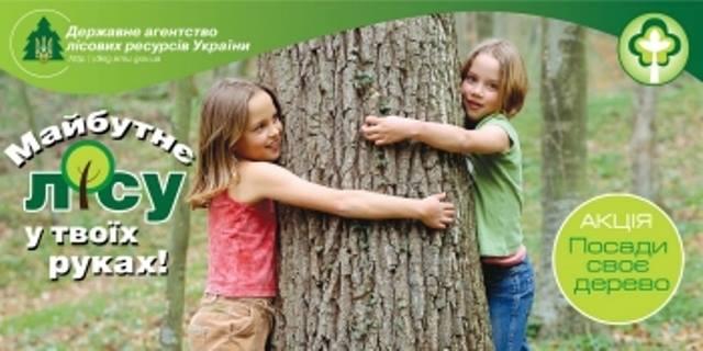 Держлісагентство розпочинає акцію «Майбутнє лісу у твоїх руках»