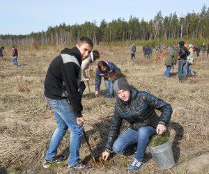 Всеукраїнська акція Держлісагенства  «Майбутнє лісу у твоїх руках»