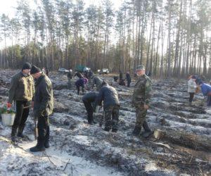 Лісівники Лебединщини з нетерпінням чекають весну