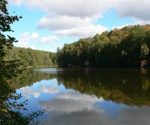 """Гідрологічна пам'ятка природи загальнодержавного значення """"Озеро Шелехівське"""""""