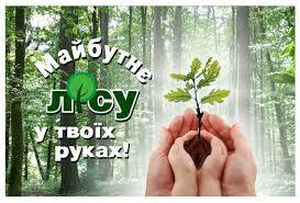 21 березня в Україні стартує акція Держлісагентства «Майбутнє лісу у твоїх руках»