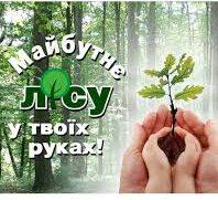 """21 березня в Україні стартує акція Держлісагентства """"Майбутнє лісу у твоїх руках"""""""