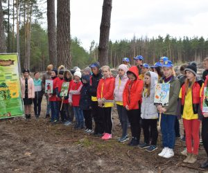 Відтворимо ліси разом