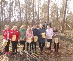 Розвішування синичників – метод біологічної боротьби із шкідниками лісу