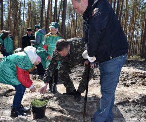 На Сумщині в рамках акції «Майбутнє лісу у твоїх руках» створили 46 га лісів