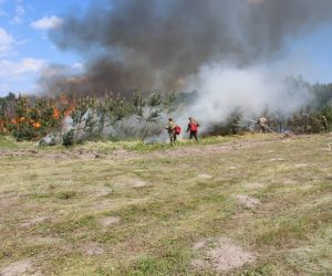 Сумські лісівники тренувалися гасити лісові пожежі