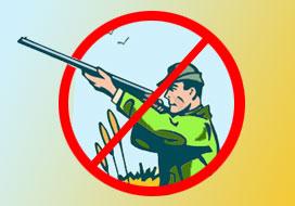 На період введення воєнного стану полювання заборонене у восьми  прикордонних районах області