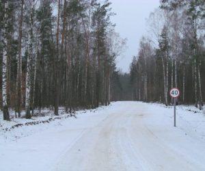 На Сумщині додалося лісових доріг