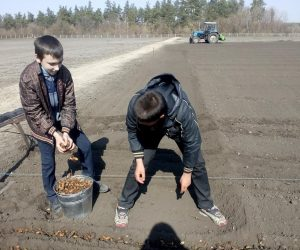 Надійний тил лісівників Лебединщини – учні шкільних лісництв