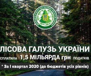 Держпідприємства лісової галузі сплатили 1,5 млрд гривень податків