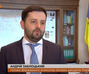 Всі ділянки суцільних зрубів відновлюють молодим лісом, – Голова Держлісагентства Андрій Заблоцький