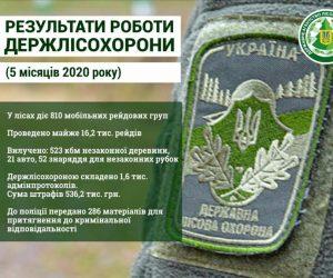 У лісах проведено 16,2 тис. рейдів з попередження незаконних рубок