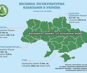 В Україні висадили майже 125 мільйонів дерев