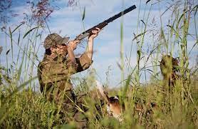 """Про проведення полювання на території ДП""""Лебединський лісгосп"""" на пернату дичину, хутрового звіра та парнокопитних тварин у мисливський сезон 2021-2022 року"""