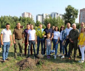 До 30-ї річниці Незалежності України на Сумщині висадили 30 катальп