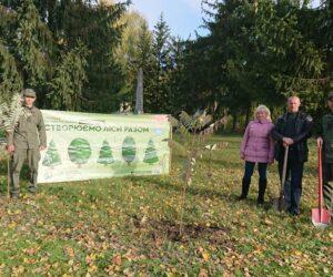 Межиріцький парк поновився новими деревами