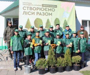 Лісівники Сумщини висадили біля навчальних закладів більше двох тисяч дерев та кущів