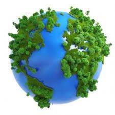 21 березня – Міжнародний день лісу