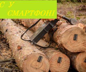 Ліс у смартфоні: Держлісагентство запустило пілотний проєкт e-реєстру заготівлі деревини та онлайн-карту рубок