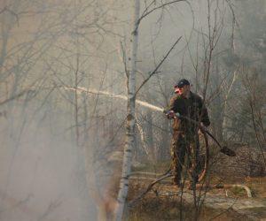 Держлісагентство: за вихідні лісівники 60 разів виїжджали на гасіння лісових пожеж