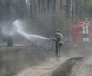 За дорученням Василя Кузьовича лісівники з 3 областей долучились до ліквідації пожеж на Луганщині