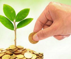 У І кварталі 2021 року держлісгоспи Сумщини сплатили майже 130 млн грн податкових платежів