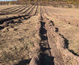 Проводимо роботи з підготовки ґрунту на новоприйнятих землях