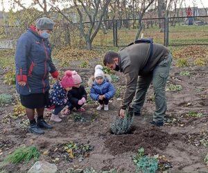 Лебединські лісівники долучилися до флешмобу з озеленення навчальних закладів